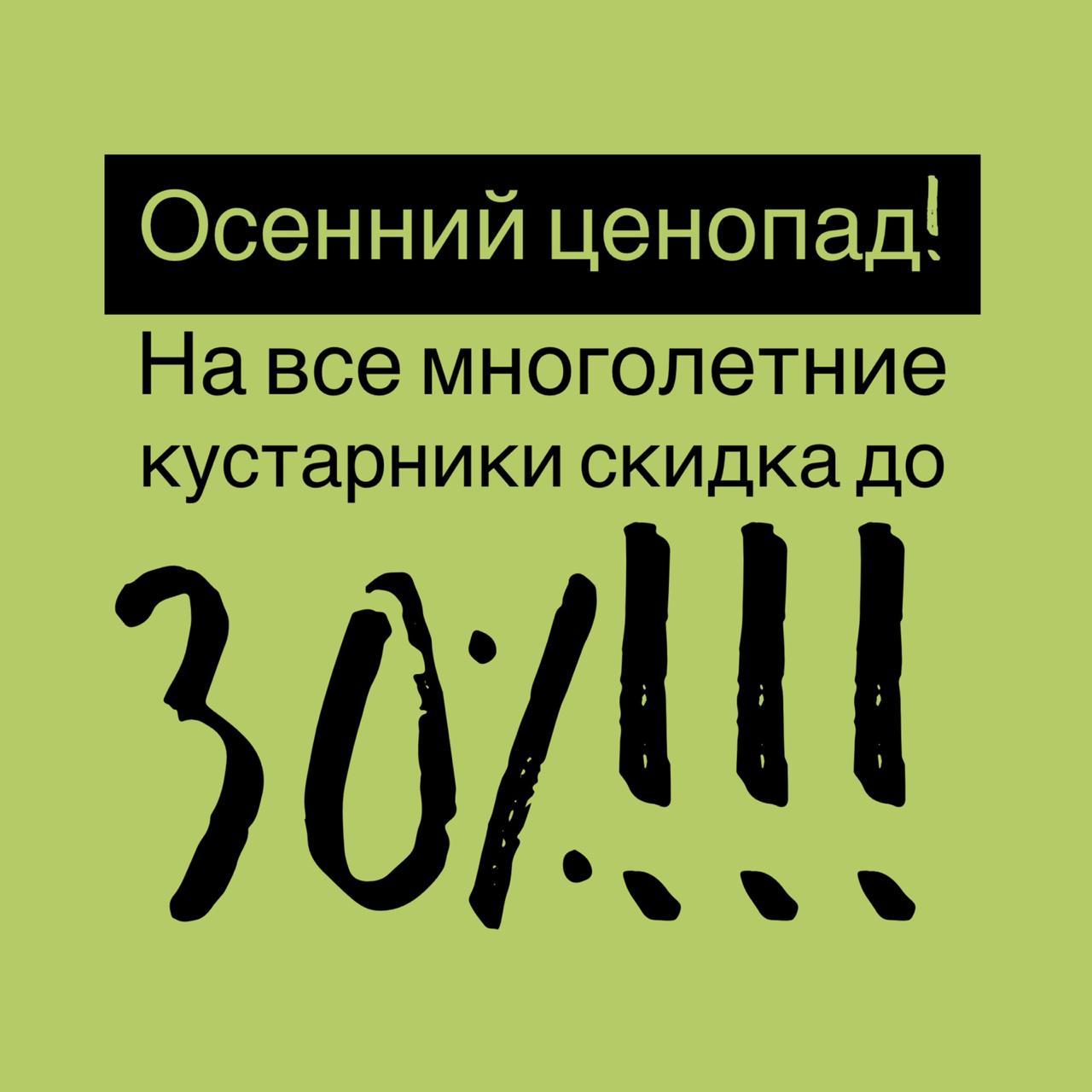 Акция! Осенний ценопад в питомнике «Флора»