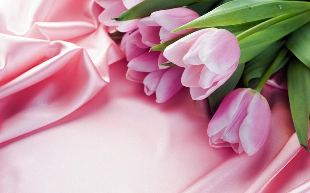 Поздравляем с Международным женским днем и наступившей весной!